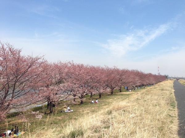 戸田競艇場近くの荒川沿い