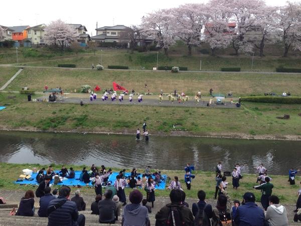 東京理科大のよさこいin利根運河